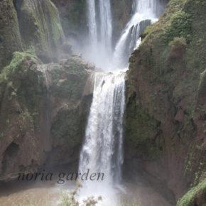 ウズウッドの滝/Cascades d' Ouzoud