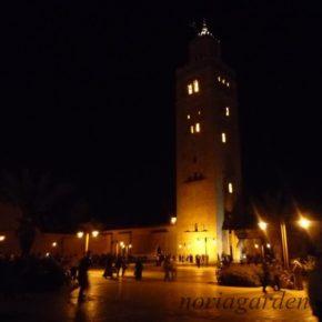 夏のモロッコ旅行特別企画!モロッコ最大の滝ウズウッドとサハラ砂漠で朝日の観賞8日間~