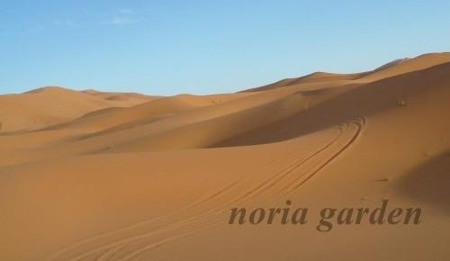メルズーガ砂漠ツアー2泊3日
